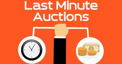 Last-Minute Expired Domain Auctions